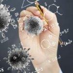 auswirkungen corona epidemie